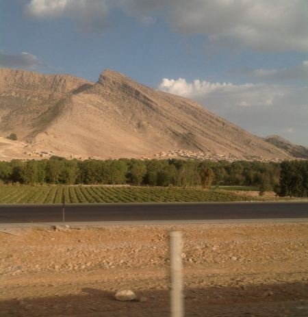 Food production, Shiraz
